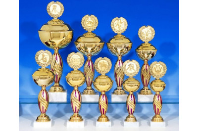Pokalserie in gold-magenta
