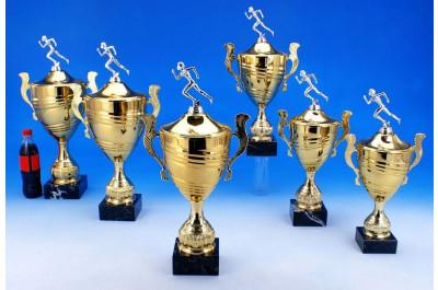 Henkel Läufer Pokale 5036-34316
