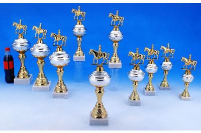 Dressurreit Pokale in Bi-color 5035-34384