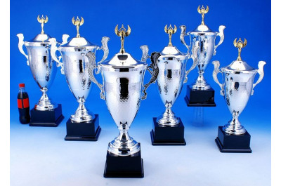 Wanderpokale Sieger 5039-34520