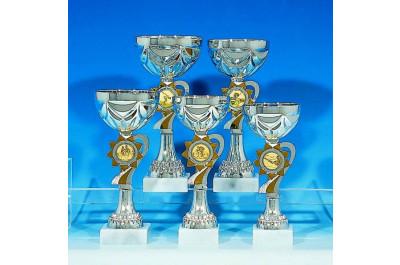 5er Pokalserie in silber-gold