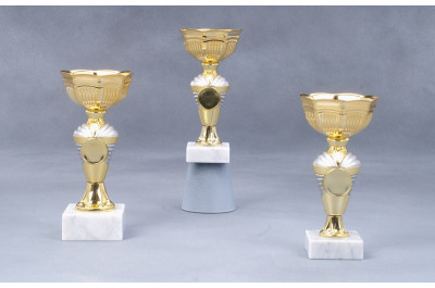 Cup Pokale gold-silber 7008