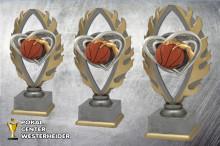 Basketball Pokale farbig BQ179