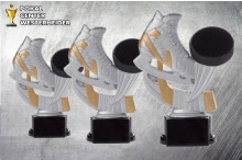 Eishockey Pokalserie -Trophäen ST39163-65