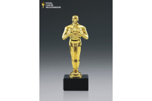Hollywood Award Budget AZ-78840
