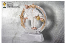 Judo Figur silber-gold ST39331