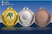 Judo Medaillen ''Grandios'' ST9180-60475