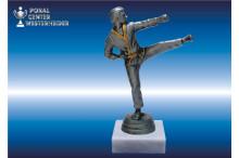 Karate Pokale Figuren silberantik männlich