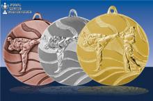 Karatemedaillen Kumite Dachi in gold-silber-bronze